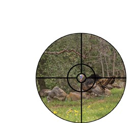 Turkey Pro BTR Reticle 1.65
